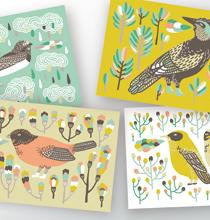 Vögel - Postkartenset